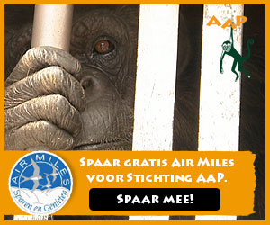 Stichting AAP AIRMILES